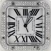 Cartier Santos 100  W20073x8 857113lx #2