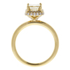 1.19 ct. Emerald Cut Halo Ring, M-Z, VS1 #4